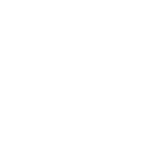 Acerni Custom Engineering